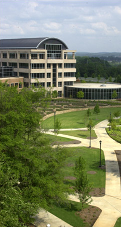 Kennesaw State University Job Opportunities